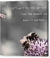 Perfect Moment Canvas Print