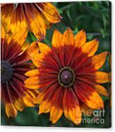 Perfection In Red And Orange Canvas Print