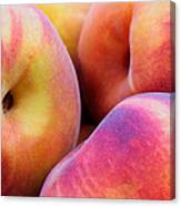 Perfectly Peachy Canvas Print