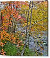 Perkiomen Creek - Perkiomenville Pa - Autumn Foliage Canvas Print
