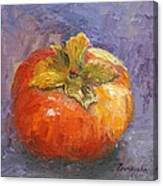Perky Persimmon Canvas Print