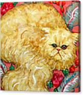 Persian Cat On A Cushion Canvas Print