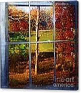 Perspective On Fall  Canvas Print