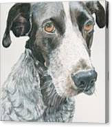 Pet Portrait Dog Art Print Hire Commission Pet Portrait Artist Canvas Print