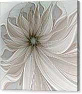 Petal Soft White Canvas Print