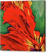 Petals Of Fire Two Canvas Print