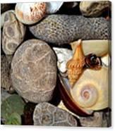 Petoskey Stones Ll Canvas Print
