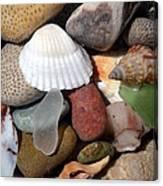 Petoskey Stones Lv Canvas Print