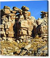 Petrified Forest Rock Formations Canvas Print