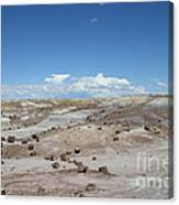Petrified Forest Canvas Print