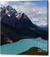 Peyto Lake Canadian Rockies Canvas Print