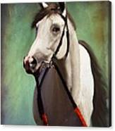Phantom Lover Race Horce Before The Race Canvas Print