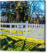 Phelps Cemetery  Canvas Print