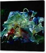 Phenom Black Canvas Print