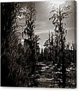 Phinizy Swamp Canvas Print