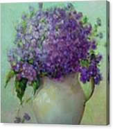 Phlox          Copyrighted Canvas Print
