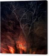 Phoenix One Canvas Print