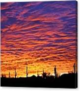 Phoenix Sunrise Canvas Print