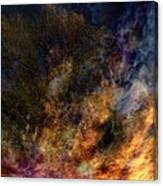 Phoenix Two Canvas Print