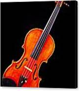 Photograph Of A Complete Viola Violin In Color 3368.02 Canvas Print