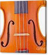 Photograph Of A Viola Violin Middle In Color 3374.02 Canvas Print