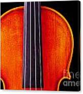 Photograph Or Picture Violin Viola Body In Color 3367.02 Canvas Print