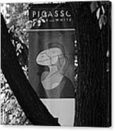 Picasso In Black And White Canvas Print