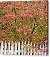 Picket Fence Fall Canvas Print