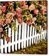 Picket Fence Canvas Print
