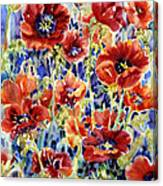 Picket Fence Poppies Canvas Print