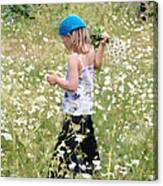 Picking Daisies Canvas Print