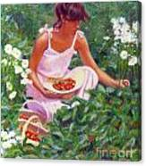 Picking Strawberries Canvas Print