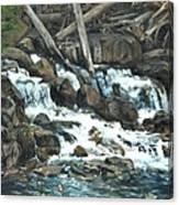 Picnic At The Falls Canvas Print