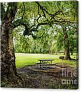 Picnic At The Park Canvas Print