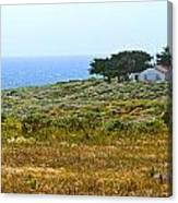 Piedras Blancas Lighthouse Near San Simeon And Cambria Along Hwy 1 In California Canvas Print