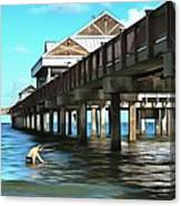 Pier 60 - Clearwater Florida  Canvas Print