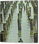 Piers And Birds Canvas Print