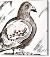 Pigeon II Sumi-e Style Canvas Print