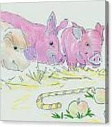 Pigs Cartoon Canvas Print