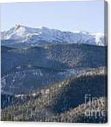 Pike National Forest In Snow Canvas Print