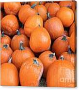 Piles Of Pumpkins Canvas Print