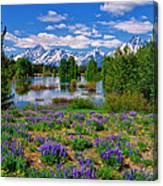 Pilgrim Creek Wildflowers Canvas Print