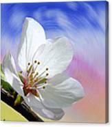 Pin Cherry Swirl Canvas Print