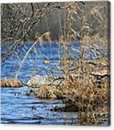 Pine Acres Lake Blues  Canvas Print