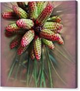 Pine Flower Bouquet Canvas Print