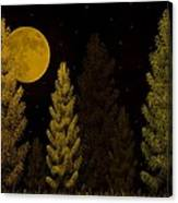 Pine Forest Moon Canvas Print