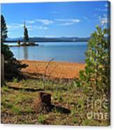 Pine Trees In Lake Almanor Canvas Print