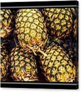 Pineapple Color Canvas Print