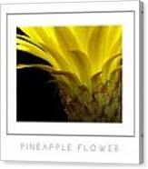 Pineapple Flower Poster Canvas Print