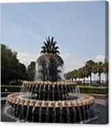 Pineapple Fountain Charleston Canvas Print